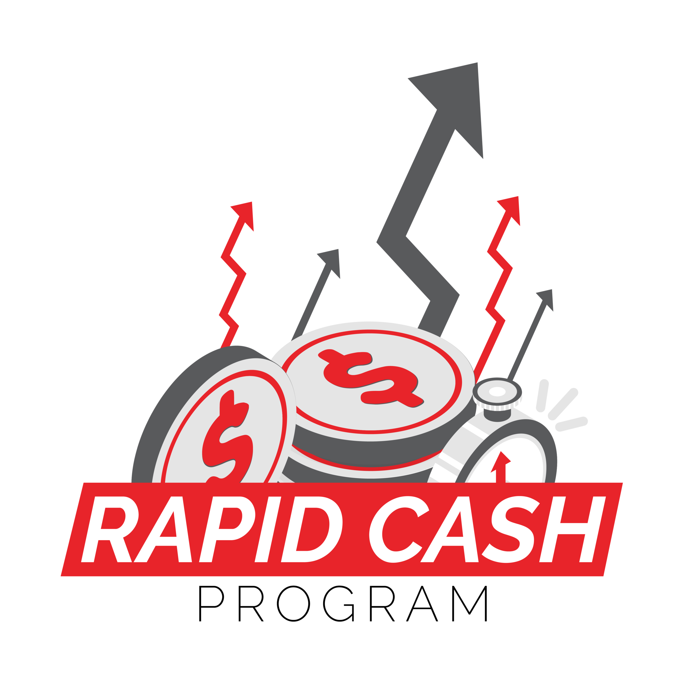 Rapid Cash Flow Logo 1-1